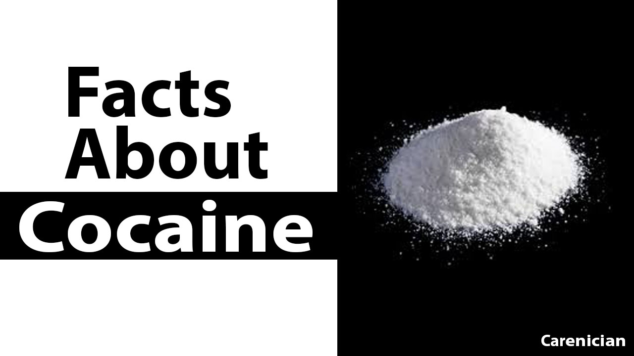 facts you should know about cocaine carenician